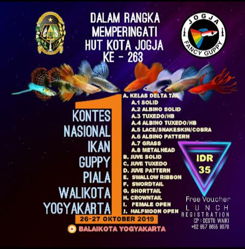 Kontes Nasional Ikan Gappy Piala Walikota Yogyakarta.
