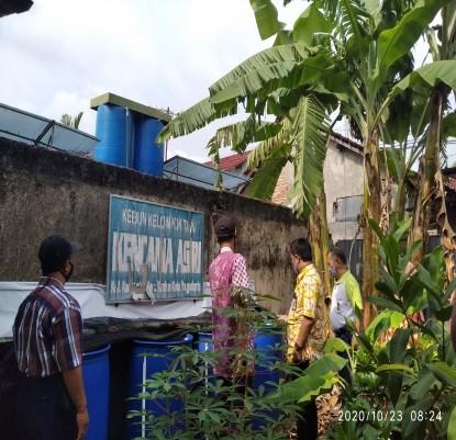 Perkembangan Budidaya Lele Cendol di Wilayah Kelurahan Kadipaten