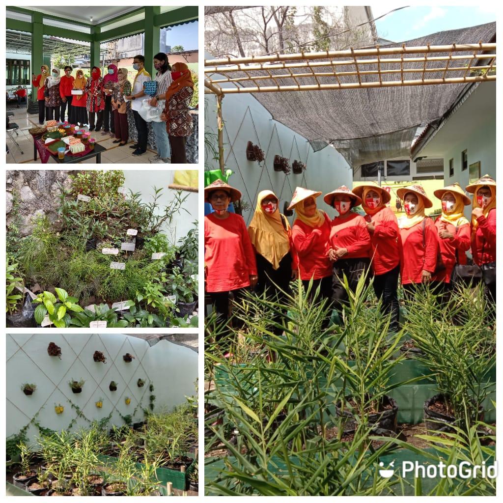 Penjurian Kebun Jahe Merah dan TOGA di Kelurahan Keparakan