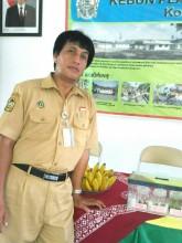 Bambang Dwi Hatmoko PH, Core Of The Core Pisang  Dari Kebun Plasma Nutfah Pisang Yogyakarta