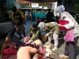 Pemantauan dan Pemeriksaan Hewan Kurban di Tengah Pandemi Covid-19
